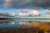 No.49 Spejling i Roddenbjerg sø