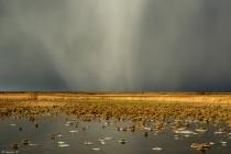 No.60 Haglbyge trækker ind over Flade sø 2